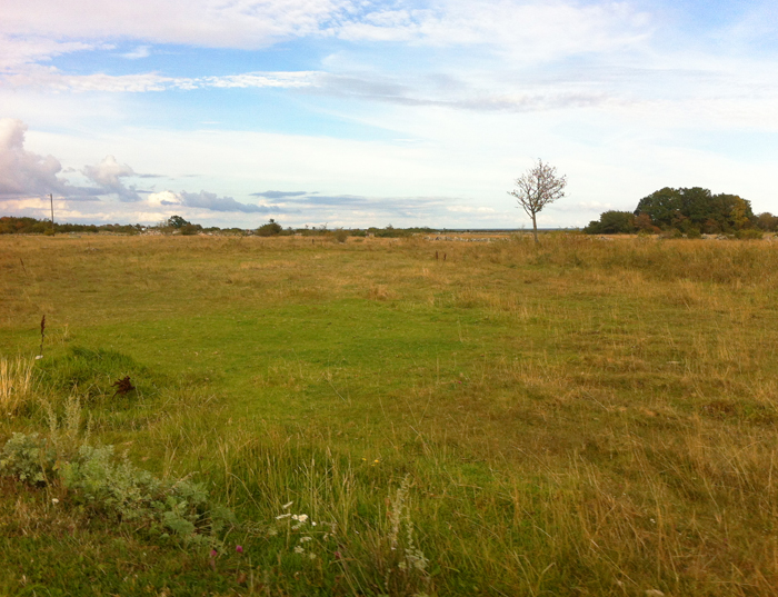 Trosnäs - Frönäs sjömarker